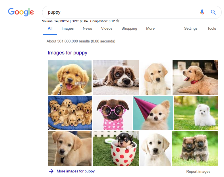 The evolution of Googles SERPs now included images