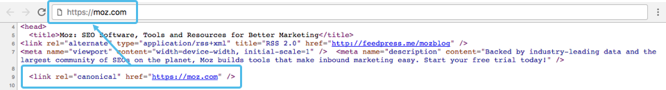 Canonical tag on the Moz homepage