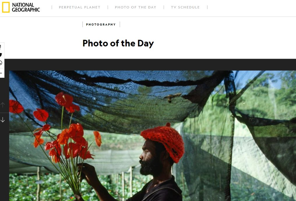 Screenshot of the Photo of the Day in National Geographic, taken on 13/07/2020